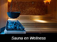 icon-sauna-wellness