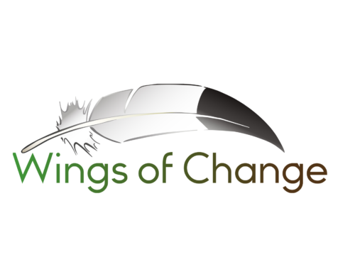 Stichting Wings of Change